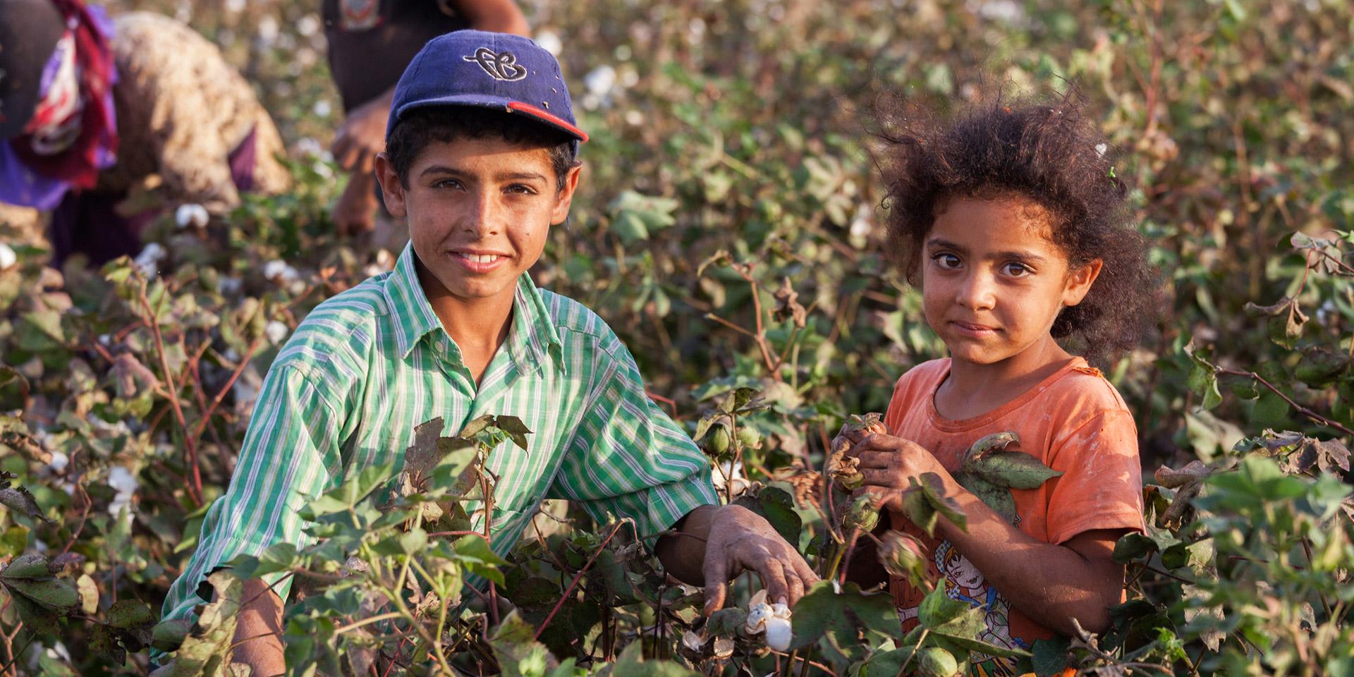 Kinder arbeiten auf einem Feld, © iStock / yavuzsariyildiz
